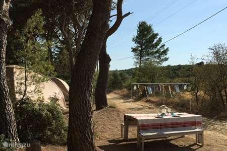 Vakantiehuis Frankrijk, Hérault, Mèze glamping / safaritent / yurt Karsten Tent Grenache