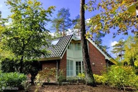 Vakantiehuis Nederland, Gelderland, Beekbergen villa Vakantie Villa Veluwe