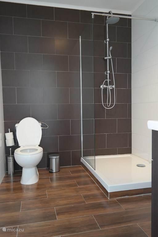 groten badkamer met inloop doch en wc en wastafel