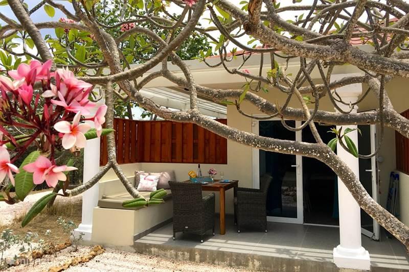 Vacation rental Curaçao, Banda Abou (West), Sint Willibrordus Studio Kas Amigu