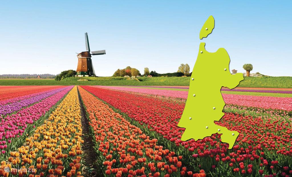 Welkom in Noord-Holland