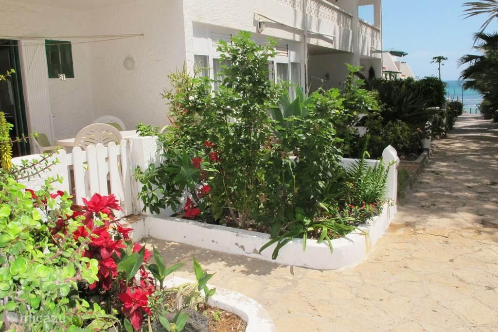Vakantiehuis Spanje, Fuerteventura – studio Hoplaco