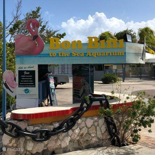 Curacao Sea Aquarium
