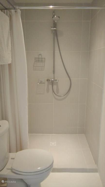 Badkamer - douche en toilet