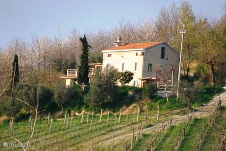 Vacation rental Italy, Marche, Montefiore dell 'Aso holiday house casa anne