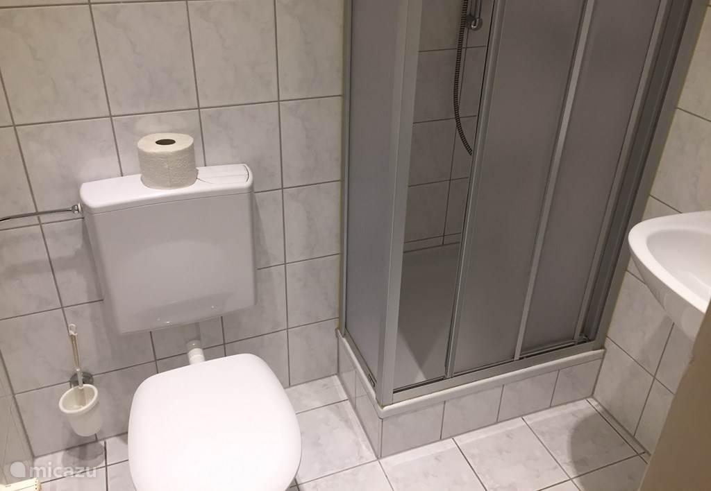 Modernized shower, toilet, sink.