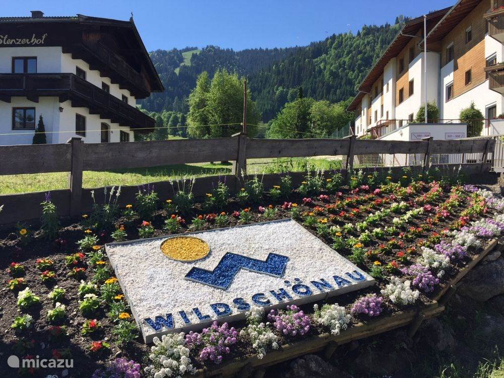 Vacation rental Austria, Tyrol, Niederau Apartment Sonnenalp Bergblick (1-4 people)