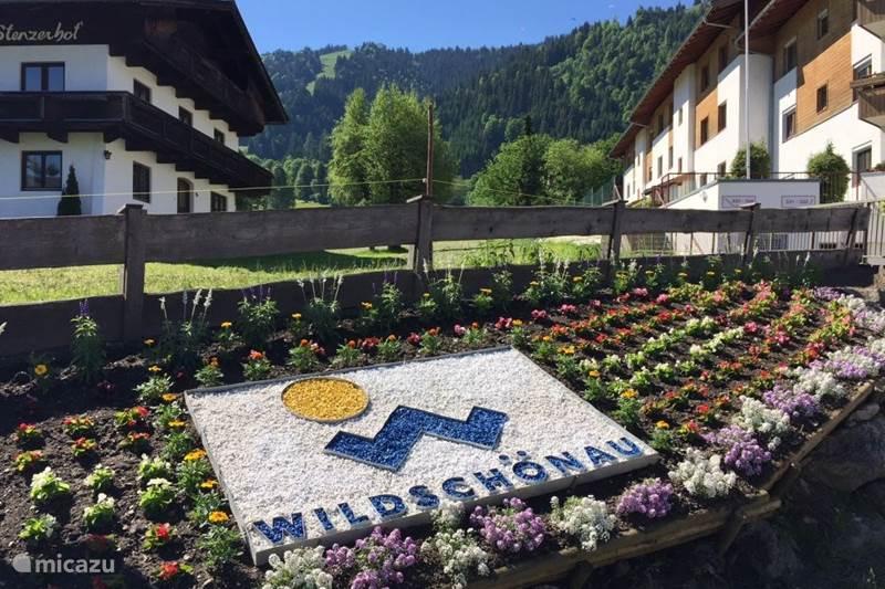 Vakantiehuis Oostenrijk, Tirol, Niederau Appartement Sonnenalp Bergblick (1-4 pers)