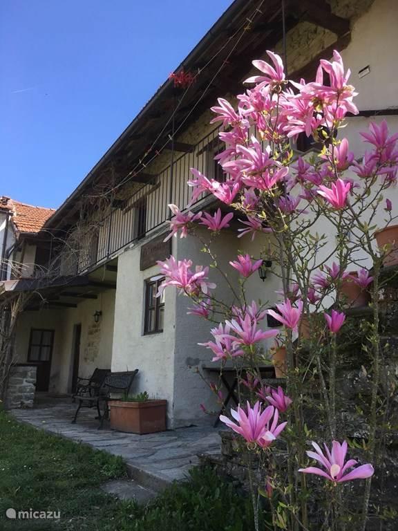 Vakantiehuis Italië, Piëmont, Cessole Vakantiehuis Villa Dona
