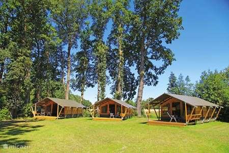 Vakantiehuis Duitsland, Nedersaksen – glamping / safaritent / yurt Ferienhof BrinkOrt 1