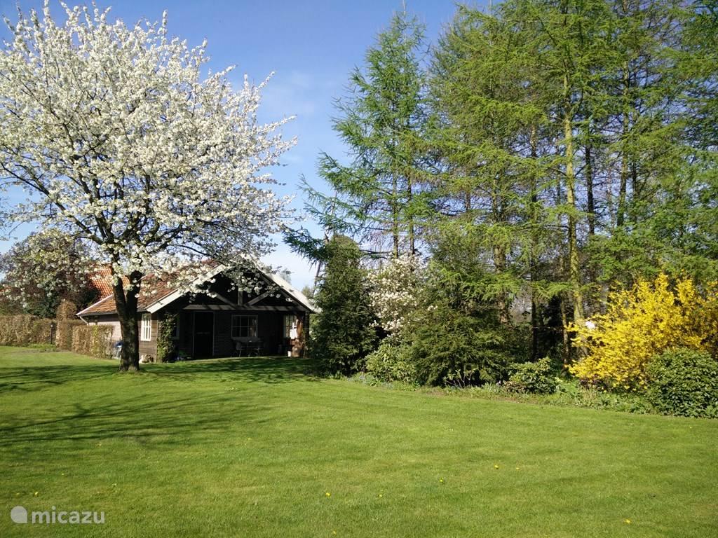 Zicht op het huisje vanaf de tuin.