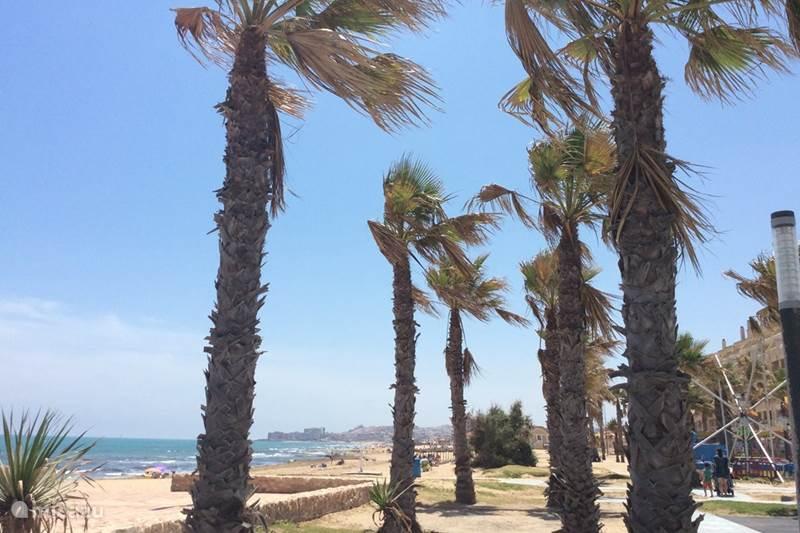 Vakantiehuis Spanje, Costa Blanca, La Mata Appartement Luxe  appt PuraVida zeezicht La Mata
