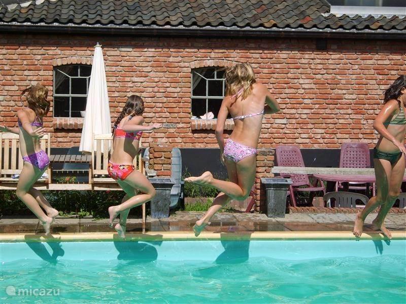 Vakantiehuis Nederland, Gelderland, Buurmalsen Vakantiehuis Lodge Rood met zwembad