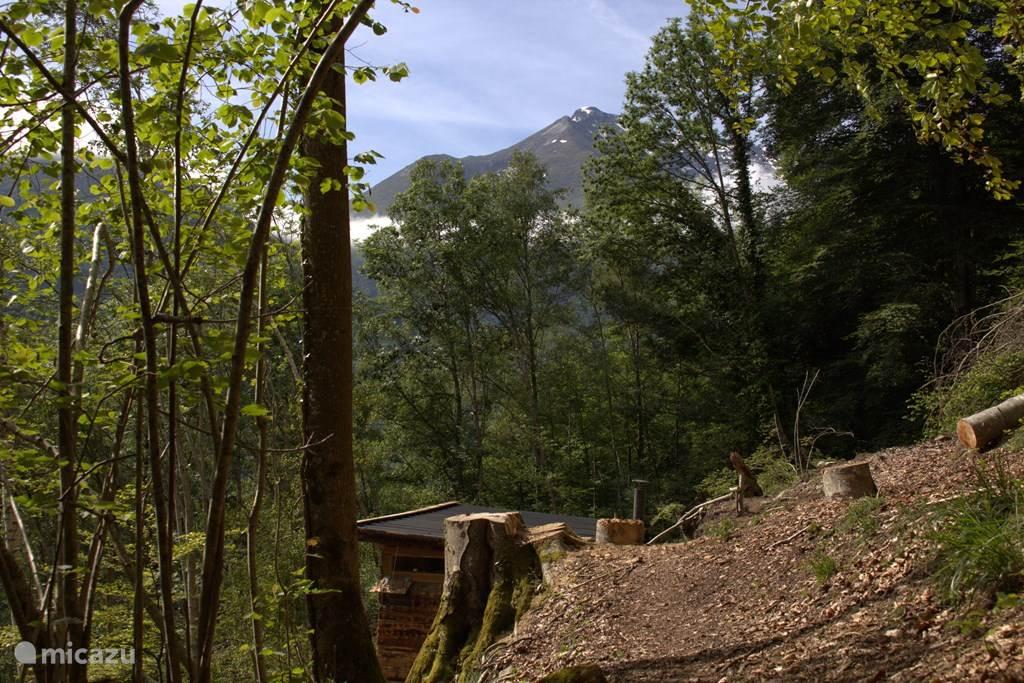 De hut ligt in een beschermd natuurrservaat waar niet gejaagd mag worden