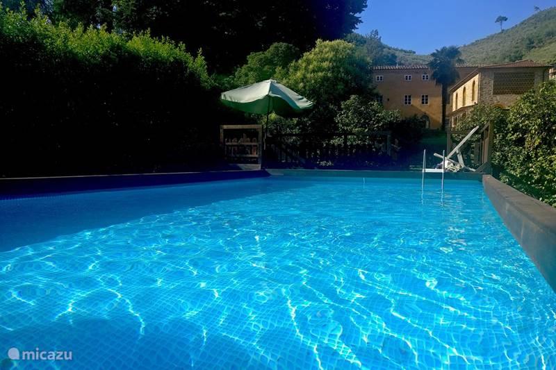 Vakantiehuis Italië, Toscane, Lucca Villa Villa Allegra
