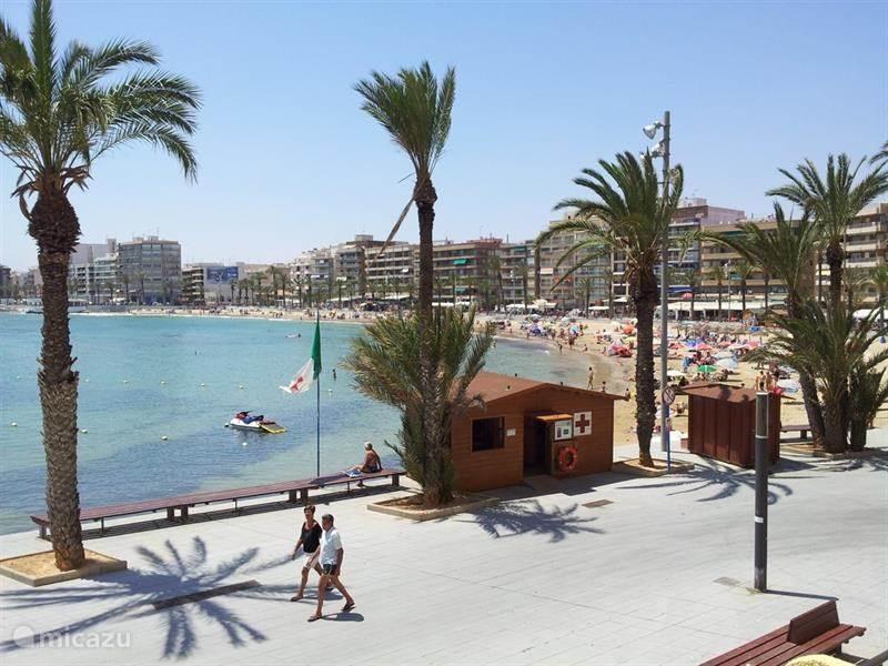 Ferienwohnung Spanien, Costa Blanca, Torrevieja appartement El Timonel
