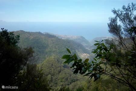 Het Noorden van Madeira