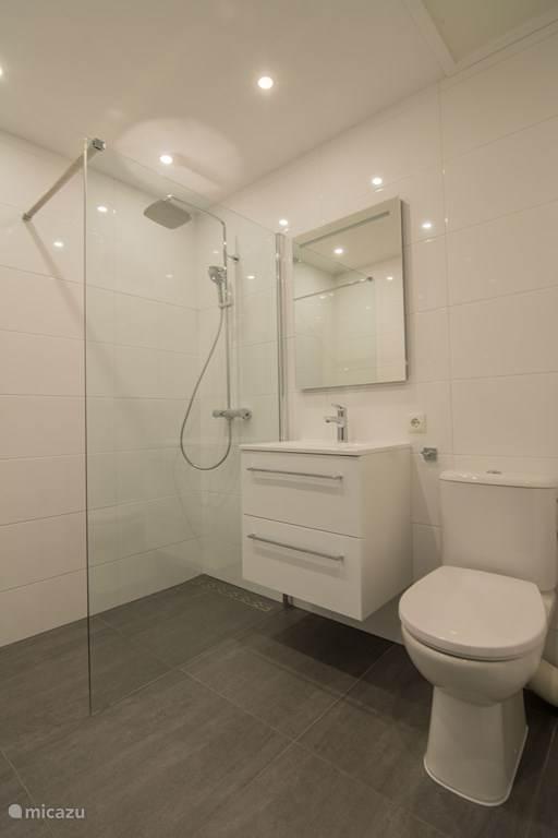 Luxe nieuwe badkamer met regendouche