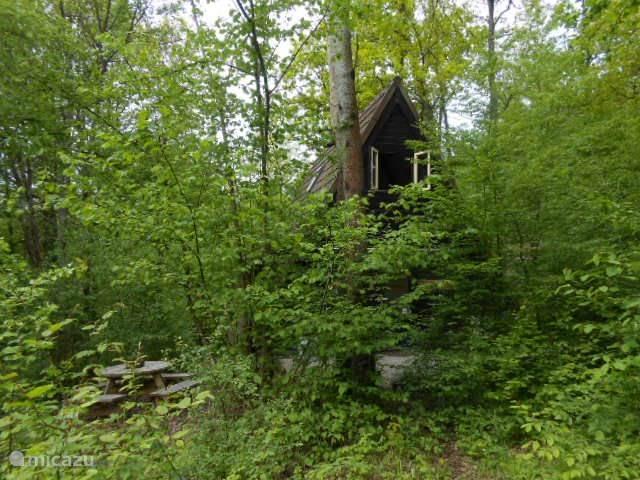 Das Haus versteckt zwischen dem Grün.