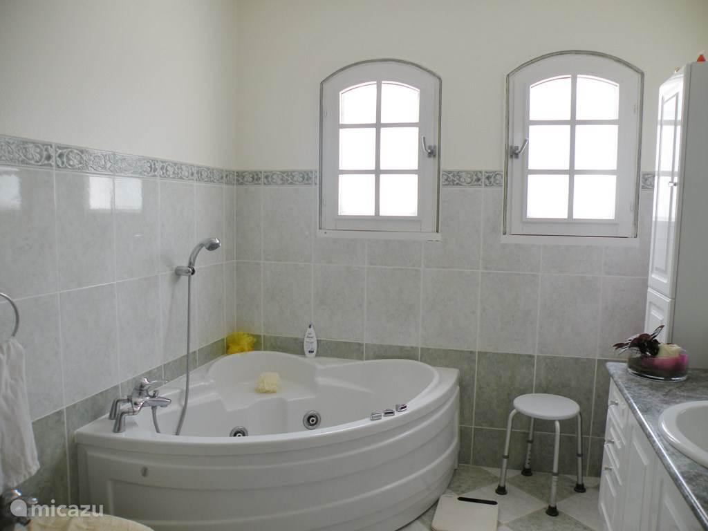 badkamer met douche, bubbelbad, bidet en wastafel