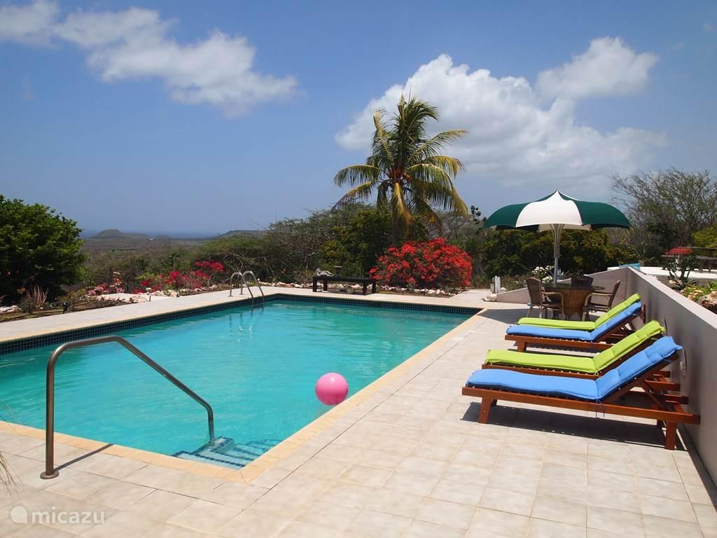Het gemeenschappelijke zwembad. ( voor woonhuis plus twee verhuur appartementen)