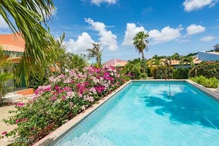Ferienwohnung Curaçao, Banda Ariba (Ost), Jan Thiel ferienhaus Verstecktes Juwel Jan Thiel