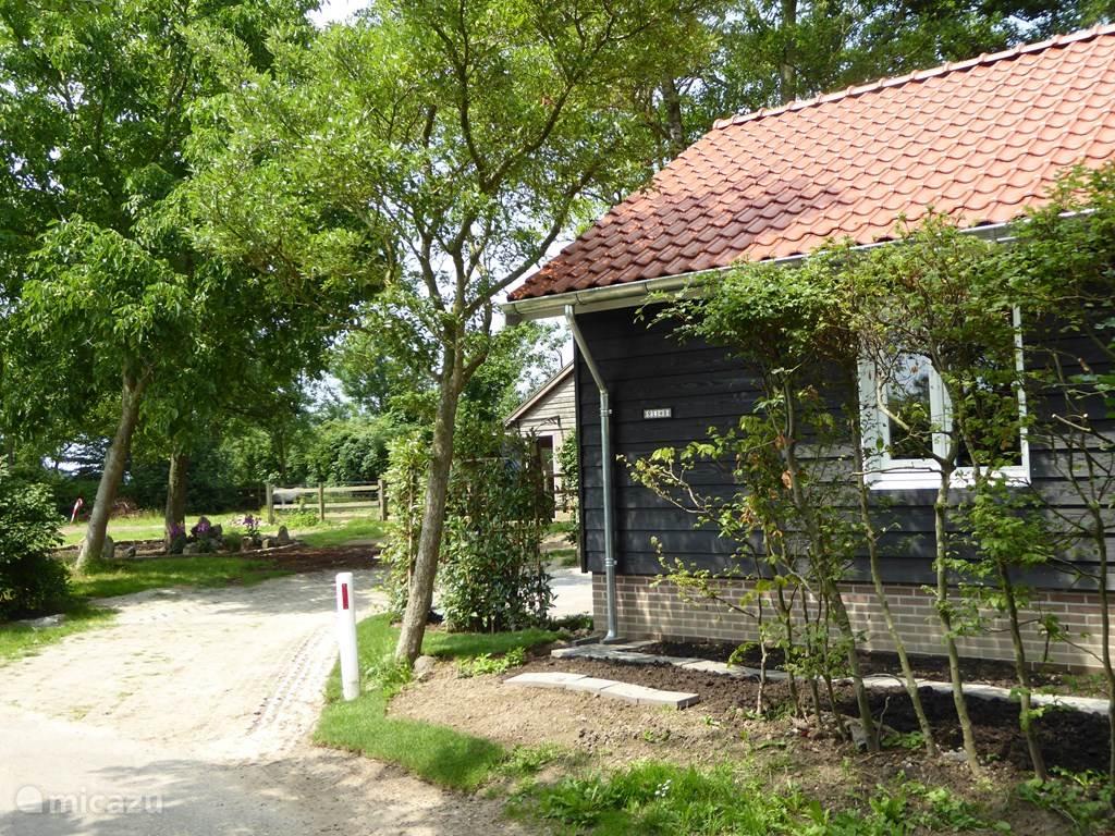Vakantiehuis Nederland, Overijssel, Welsum Vakantiehuis 1001 Nacht