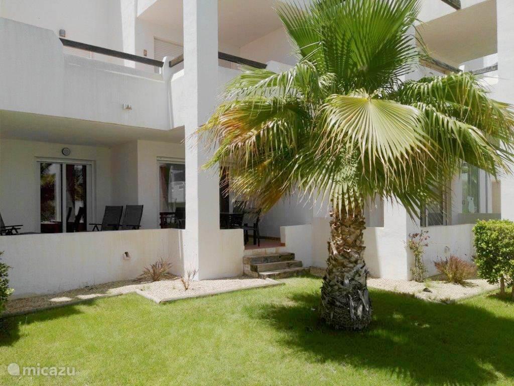Vakantiehuis Spanje, Murcia, Torre-Pacheco appartement Casa-fama