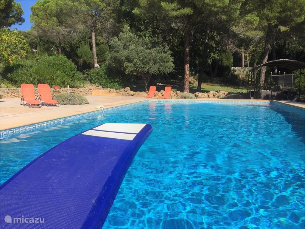 Het zwembad is 14 x 7 meter. Baantje trekken?