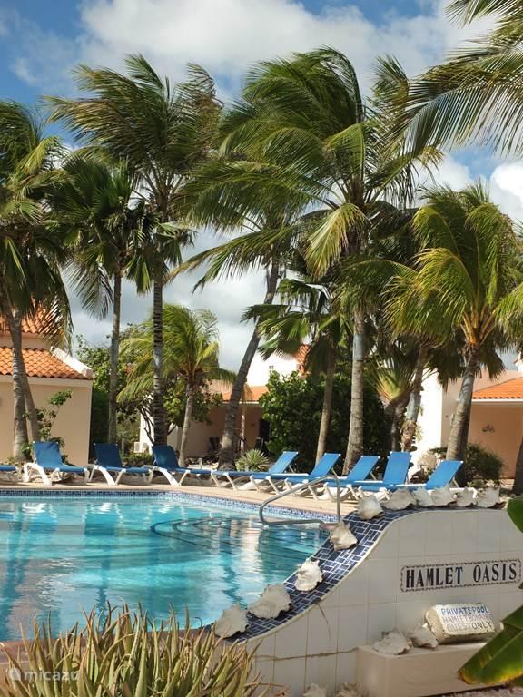 Gemeenschappelijk magna zwembad met zonterras