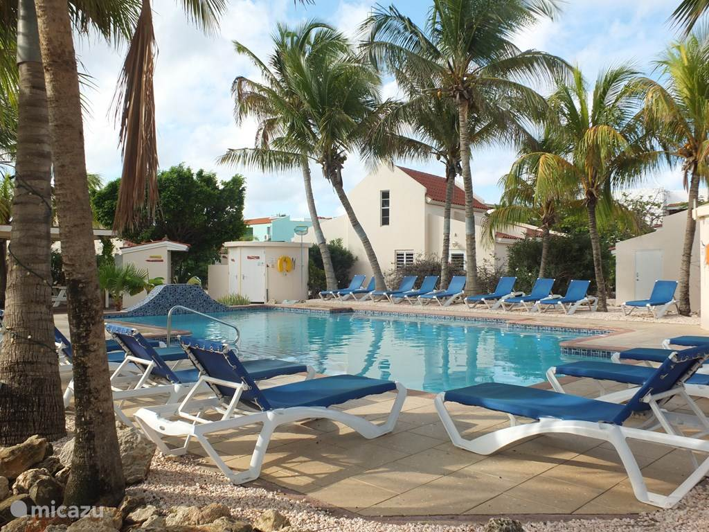 Swimming pool with sun loungers, toilet and outdoor shower available at swimming pool
