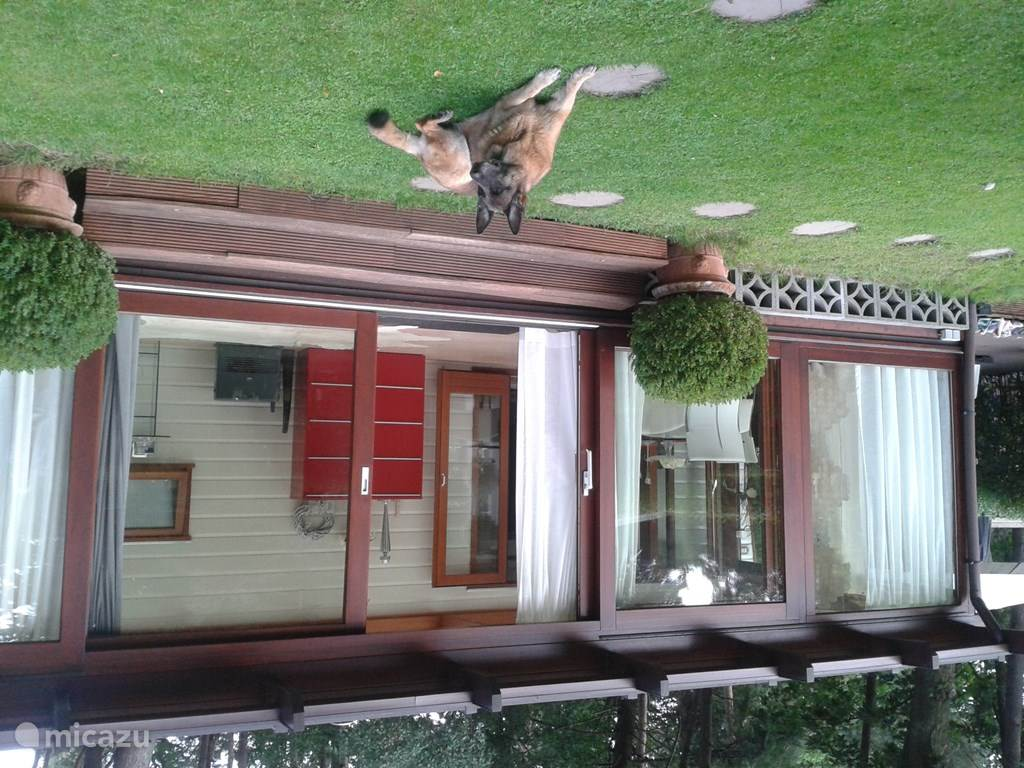 Vakantiehuis Nederland – chalet Chalet Beekse Bergen (Airco & Wifi)