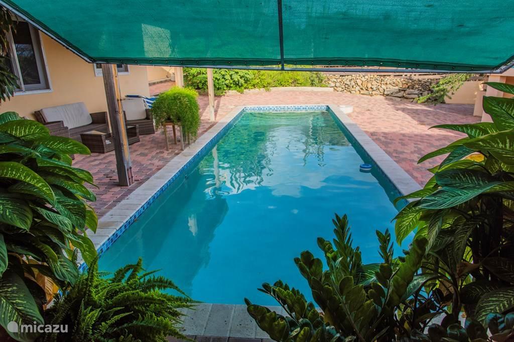 11 Meter privater Pool steht unseren Gästen in ca. 50 Schritten zur Verfügung.