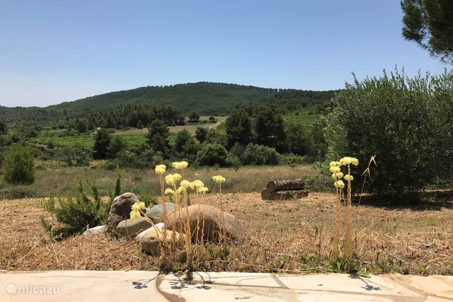 Camel Leren Bank.Rent Villa With Beautiful Views In Montouliers Herault