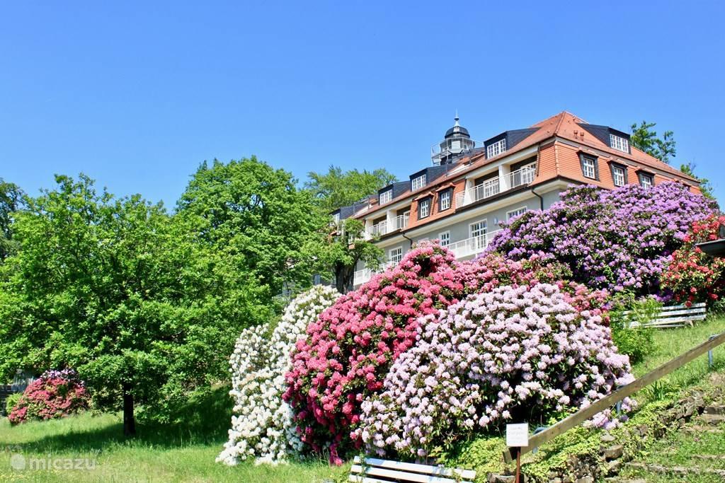 Het het huis koning Albert met onze vakantiewoning op de heuvel boven de Elbe en Dresden