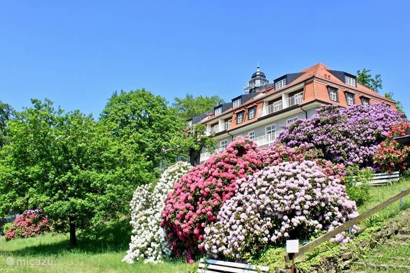 Ferienwohnung Deutschland, Sachsen, Dresden Appartement Wohnung Dresden