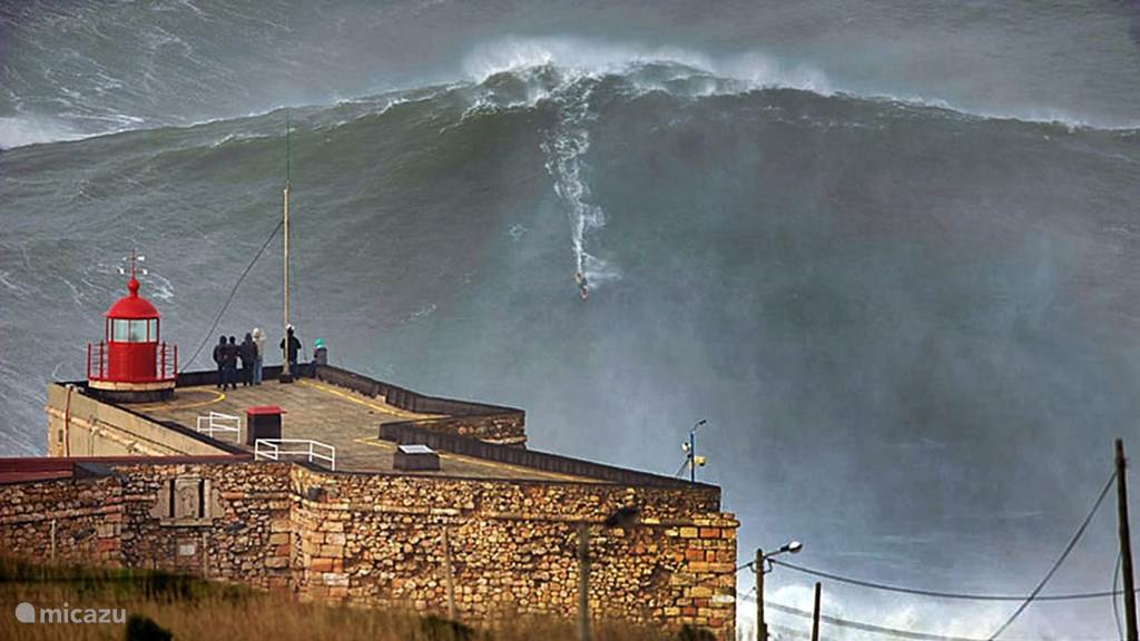 Big wave coming!