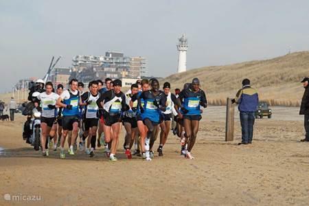 Halve marathon egmond