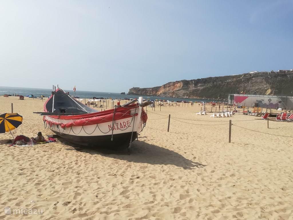 Vakantiehuis Portugal, Algarve, Barao do Sao Miguel Villa c