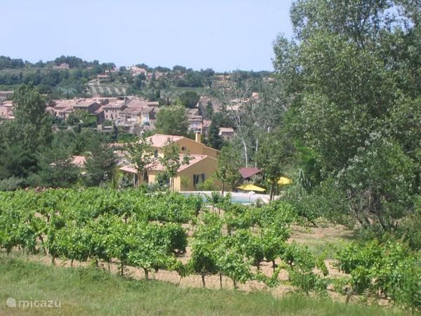 Ligging naast de wijngaarden, op de achtergrond het dorp