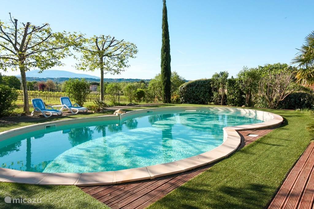 Zwembad met zicht op de wijngaarden en de Mont Ventoux.