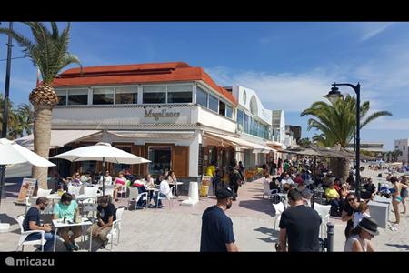 Bars/pubs aan het strand