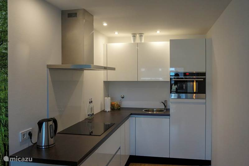 Vakantiehuis Duitsland, Sauerland, Niedersfeld - Winterberg Appartement Appartement fam. Willems Winterberg