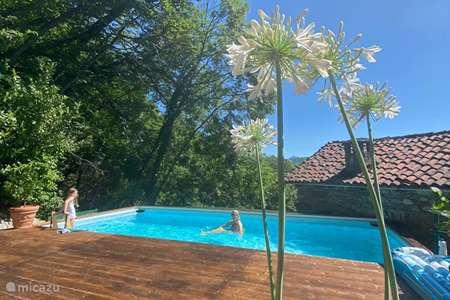 Vakantiehuis Italië, Lago Maggiore, Oggebbio villa Villa Maggiore