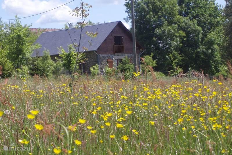 Vakantiehuis Frankrijk, Corrèze, Troche Vakantiehuis Le Domaine Vert