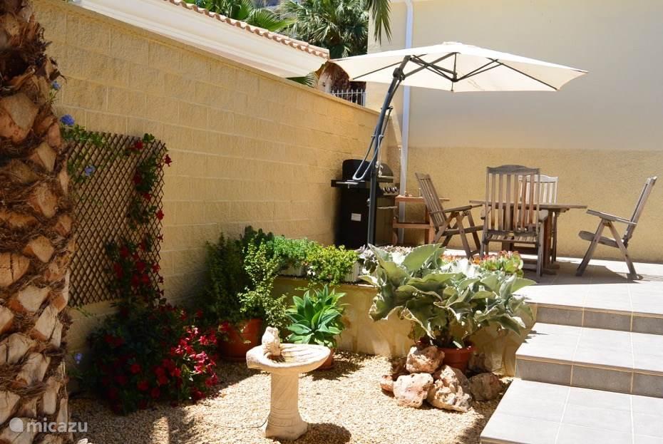 Plantenhoekje met links nog een palm