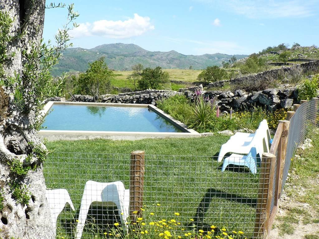 Ons bio-zwembad gevuld met bergwater uit eigen bron.