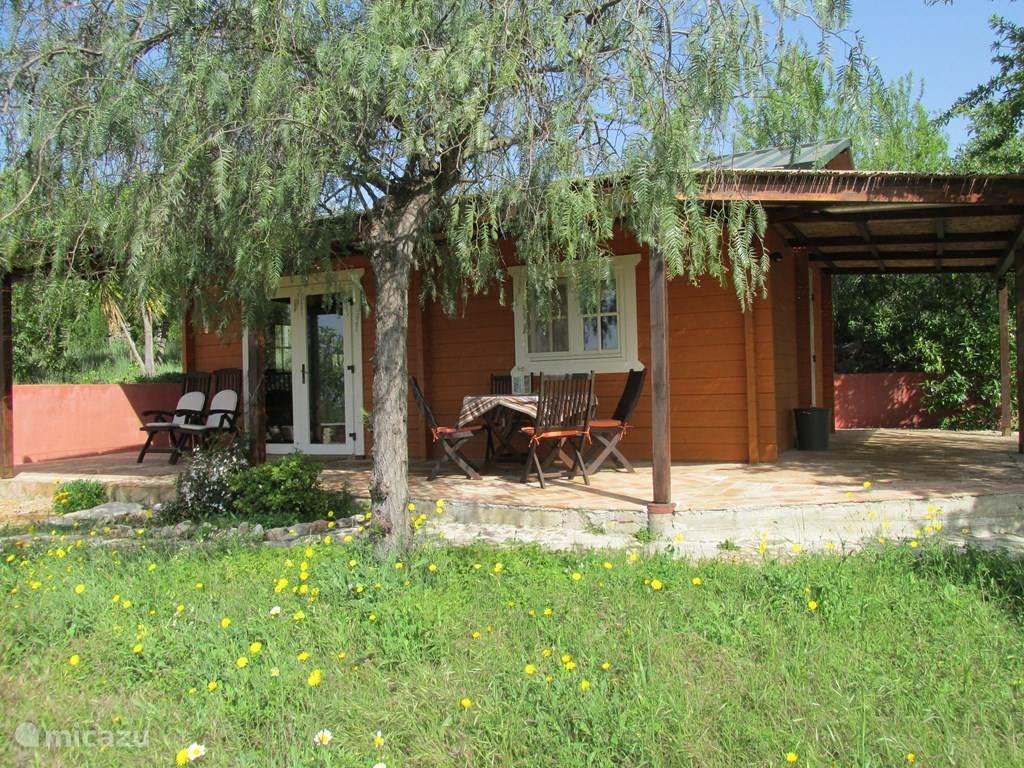 Vakantiehuis Portugal, Algarve, Loulé Gîte / Cottage Casa Pimenta