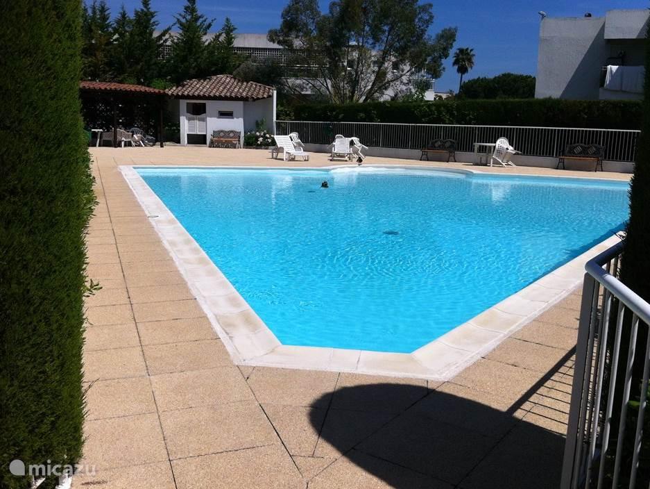 Fijn zwembad