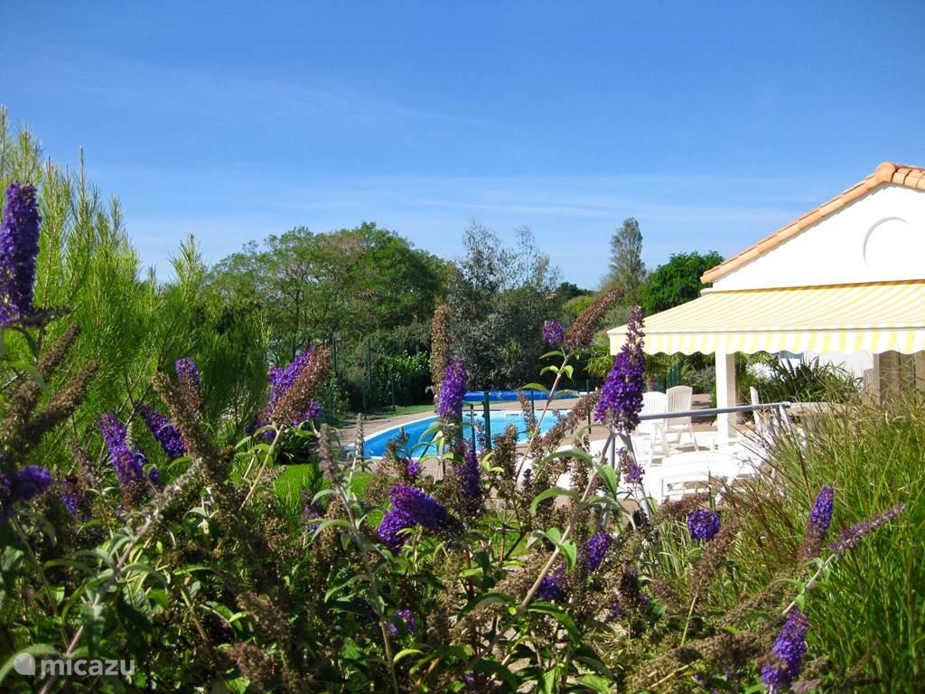 Vakantiehuis Frankrijk, Vendée, Château-d'Olonne Villa Villa in Frankrijk